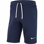Шорты Nike TEAM CLUB 19 SHORT AQ3136-451