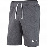 Шорты Nike TEAM CLUB 19 SHORT AQ3136-071